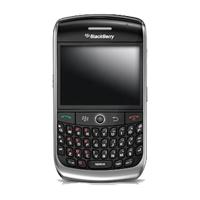 harga Blackberry Javelin 8900